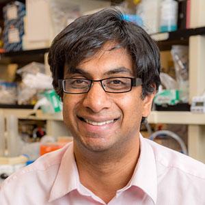 Patrick Bhola, PhD